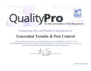 QualityPro Certificate