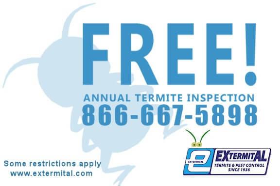 Free Termite Inspection service